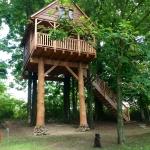 V Treehouse